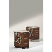 Artizan Expressions Ortho Cabinet Carts