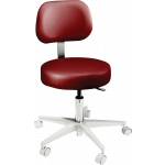 Brewer Company  2000 Series Doctor Stool